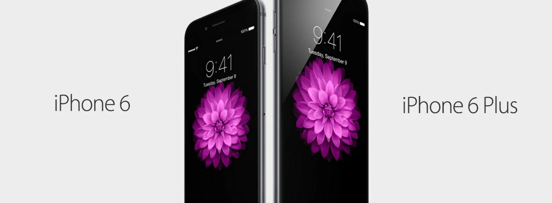 iPhone 6 y 6 Plus: sus detalles 'gadget'