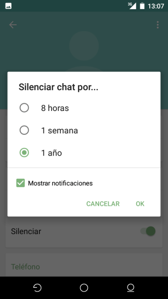 Nueva version Whatsapp 04(1)
